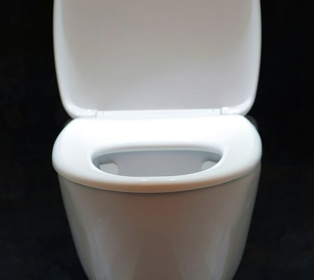 Photo of a luxury toilet